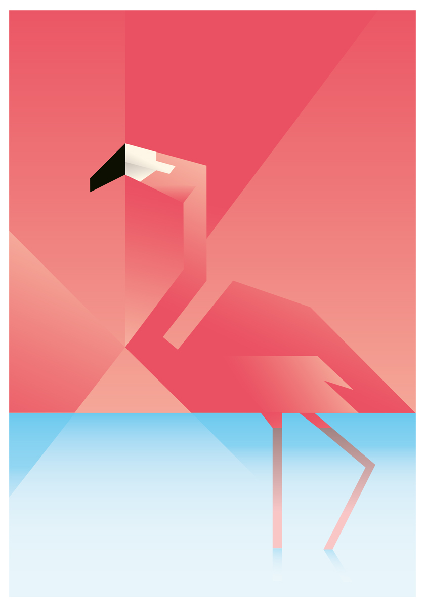 Flamingo poster by MartinSchwartz